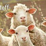 10 kg pellets d'engrais de moutons, engrais naturel biologique longue durée de fumier de moutons, fabriqué d'élevages de moutons certifiés biologiques, engrais biologique, pellets engrais moutons engrais pelouse de la marque Humusziegel image 2 produit