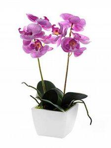 CB Imports Mini orchidée artificielle en pot - 33cm - Rose pâle de la marque CB Imports image 0 produit
