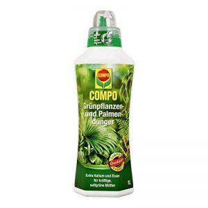 Compo Engrais pour plantes vertes et palmiers, liquide Engrais pour fleurs avec un nährstoff Combinaison Idéal pour les plantes vertes, 1L de la marque Compo image 0 produit