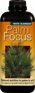 Engrais liquide concentré Palm Focus 1litre de la marque Growth Technology image 0 produit
