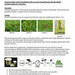 engrais pour arbres et arbustes TOP 6 image 3 produit