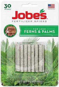 facile jardinier Inc–30-pack 16–2-6Fougère/Palm-plant Pointes de la marque Easy Gardener image 0 produit