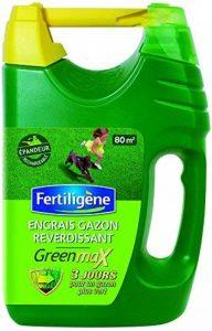 FERTILIGENE Green Max Engrais Gazon Reverdissant Express 80m² de la marque FERTILIGENE image 0 produit