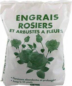 Florendi Jardin Engrais Rosiers - Blanc 13 x 5 x 25 cm de la marque Florendi Jardin image 0 produit