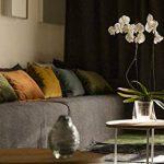 Hobby Flower Lina - Modèle spécial pour l'orchidée avec arrosage par immersion, 20 x 20 cm, fuchsia de la marque Hobby Flower image 3 produit