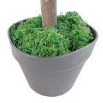 Leaf Arbre Artificiel Cèdre Conifère Topiary - Pot En Plastique Noir, 150cm Grand de la marque Leaf image 1 produit
