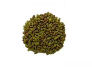Luzerne - 100 grammes - Medicago Sativa L. - Alfalfa - ( Engrais Vert - Green Manure ) - SEM05 de la marque La Lettre S Shop image 0 produit