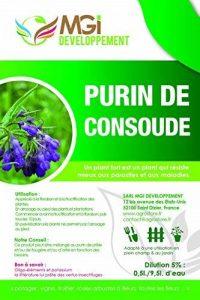 MGI DEVELOPPEMENT Purin de Consoude made in France - 5 Litres - fortifiant écologique de la marque MGI DEVELOPPEMENT image 0 produit