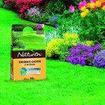 NATUREN Engrais Gazon Anti Mousse Organique 200m² 8kg de la marque NATUREN image 1 produit