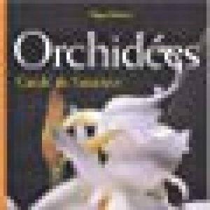 Orchidées : Guide de l'amateur de la marque Roger Bellone image 0 produit