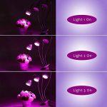 Pathonor Lampe de Croissance Rotative à 3 Têtes 30W Source Lumineuse Réalisée par 15W Puissance d'Entrée, Classe Énergétique A+++ pour Semailles Floraison des Plantes d'Intérieur de la marque Pathonor image 3 produit