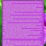 Roses Pro universel Engrais liquide Hightech NPK, Racine, du sol, engrais, engrais foliaire–Professional de la marque GREEN24 image 2 produit