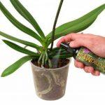 Soin complet en vaporisateur Orchid Myst 100ml de la marque Growth Technology image 1 produit