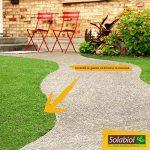 Solabiol SOGAZMOU100 Engrais Gazon Anti-Mousse, Marron, 3,5 kg de la marque Solabiol image 1 produit
