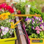Solabiol SOLICOMP1 Engrais Complet Liquide 1L Prix Choc, Marron, 1 L de la marque Solabiol image 1 produit