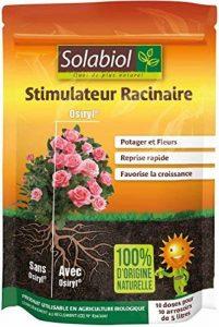 Solabiol SOSIRYL100N Stimulateur Racinaire Noir 100 ml de la marque Solabiol image 0 produit