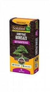 Solabiol TERBON6 Terreau Bonsaïs, 6 Liters L, Marron, 21 x 50 x 5 cm de la marque Solabiol image 0 produit