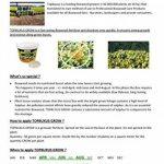 TOPBUXUS GROW, 500g pour 10m2 de buis. Pas de feuilles jaunes, faites comme le producteur de buis! de la marque TOPBUXUS image 3 produit