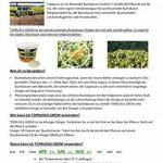 TOPBUXUS GROW, 500g pour 10m2 de buis. Pas de feuilles jaunes, faites comme le producteur de buis! de la marque TOPBUXUS image 4 produit