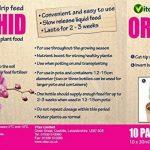 Vitax Lot de10 mini bouteilles d'engrais goutte à goutte pour orchidée30ml Mini bouteilles d'engrais pour orchidées de la marque Vitax Ltd image 1 produit
